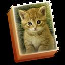 Hidden Mahjong Cat Tails: Free Kitten Game