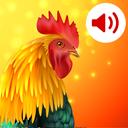 Animals: Ringtones – صدای حیوانات برای زنگ موبایل