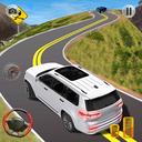 Car Games 3d Racing: Offline Racing Simulator