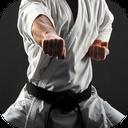 یادگیری کاراته درمنزل